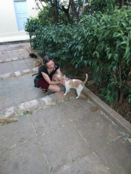 Iris helps out feeding a cat colony in historic Athens, cared for by Nine Lives volunteers