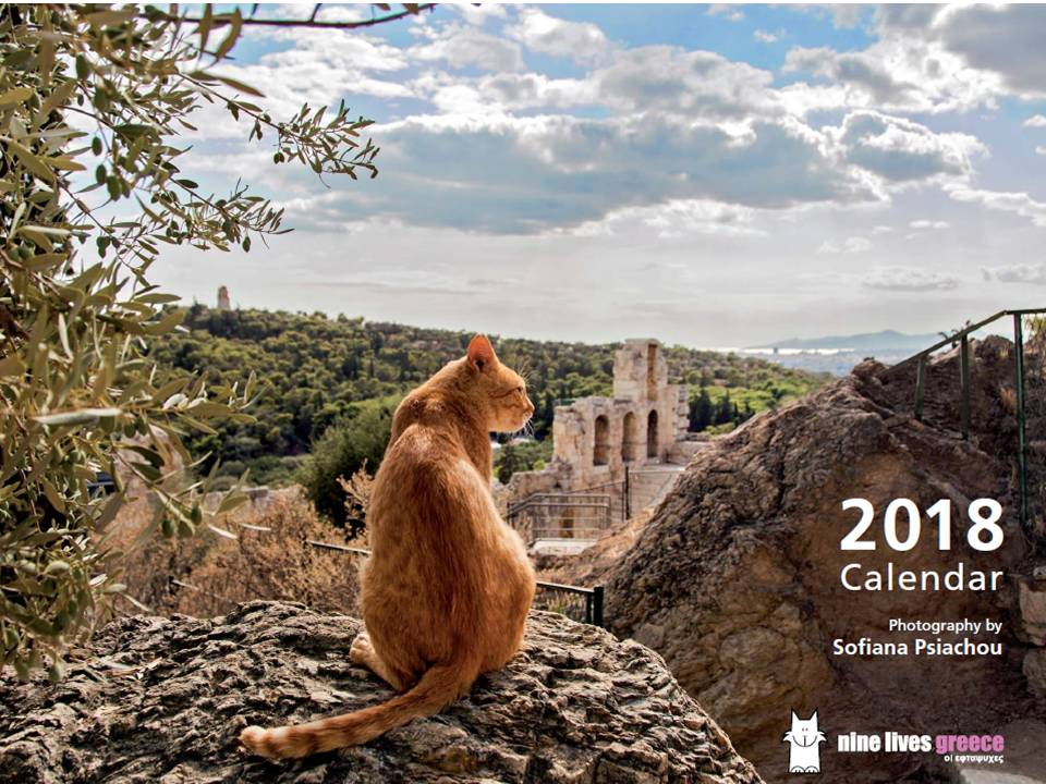Cover of this year's cat calendar with gorgeous photos by Sofiana Psiachou