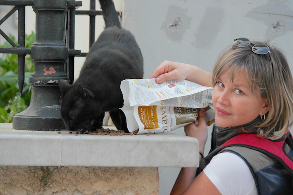 Eleni Kefalopoulou feeding a stray cat