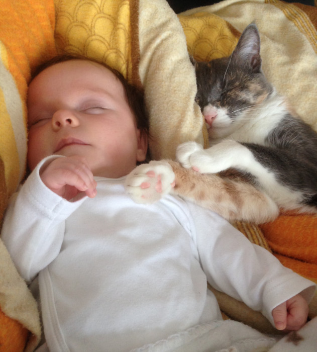 A sleeping baby with a cat snuggled up next to it.