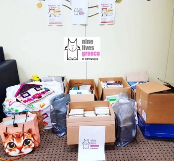 A compilation of donations gathered in front of a wall with posters of Nine Lives bazaar on top.